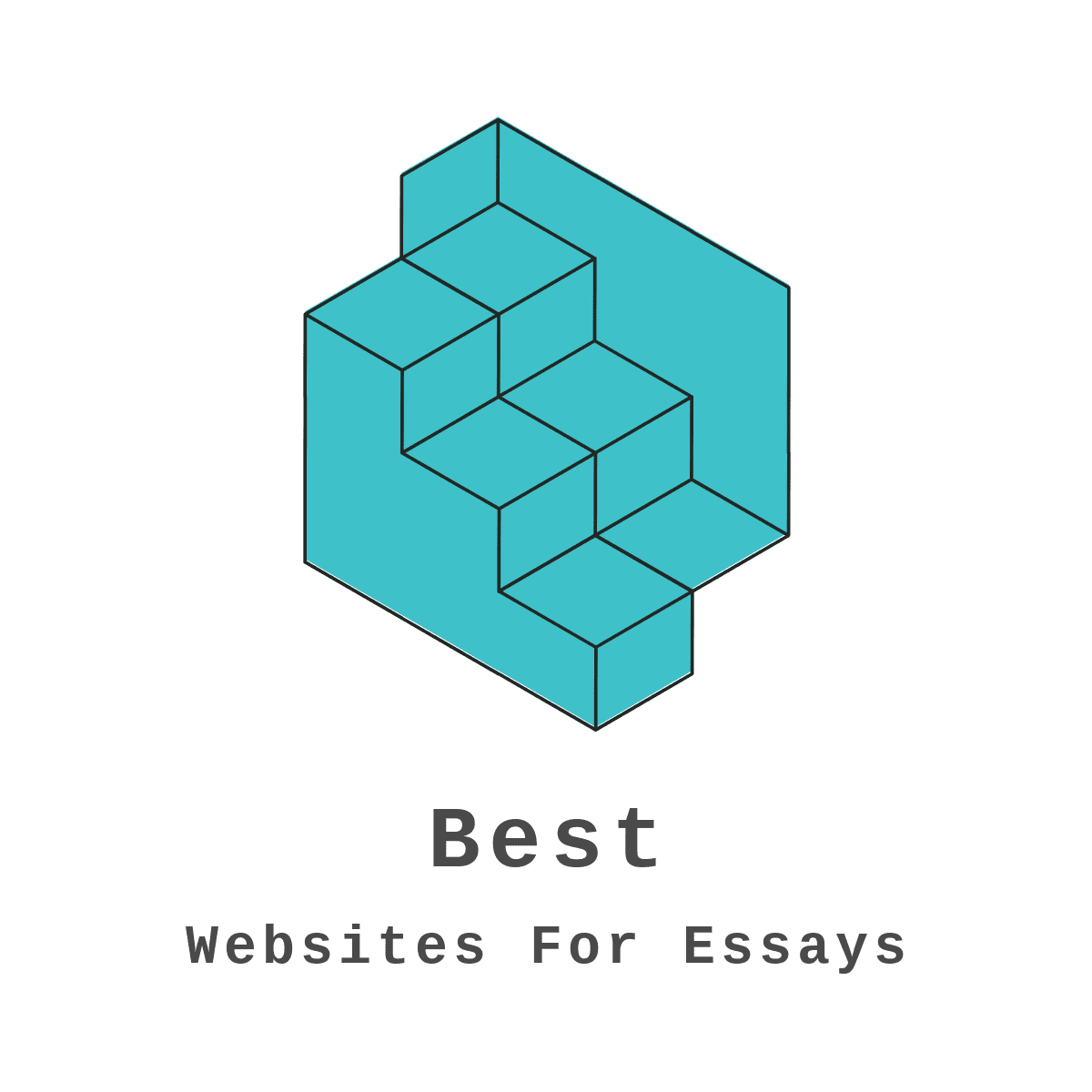 bestwebsitestowriteessays.com